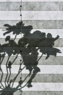 Schattenwurf auf Vorhang