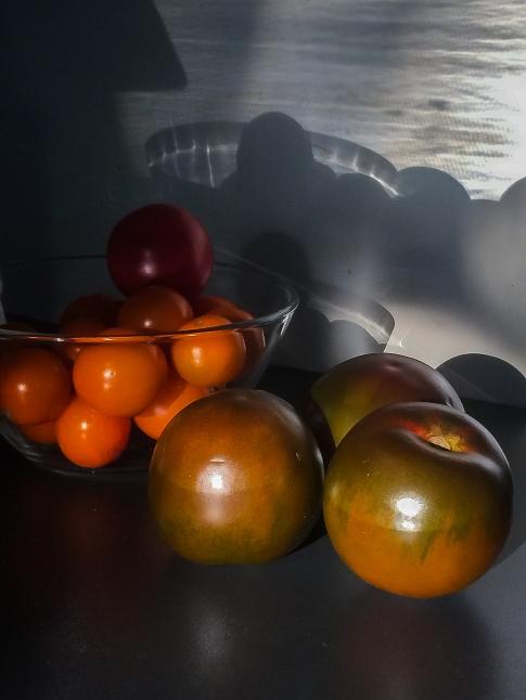 Tomaten-Schatten
